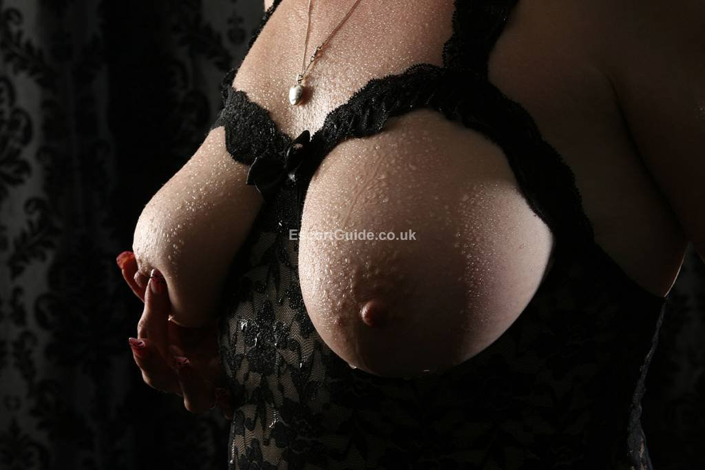 hotel bristol black escorts